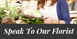 Speak To Our Florist