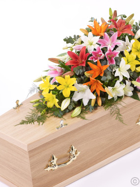 Lily Casket Spray Vibrant